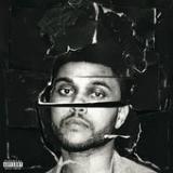 In the Night Lyrics The Weeknd