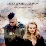 Never Forget You Lyrics MNEK & Zara Larsson