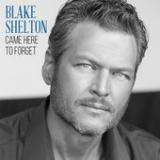 Came Here to Forget Lyrics Blake Shelton