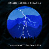 This Is What You Came For (feat. Rihanna) Lyrics Calvin Harris