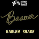Harlem Shake Lyrics Baauer
